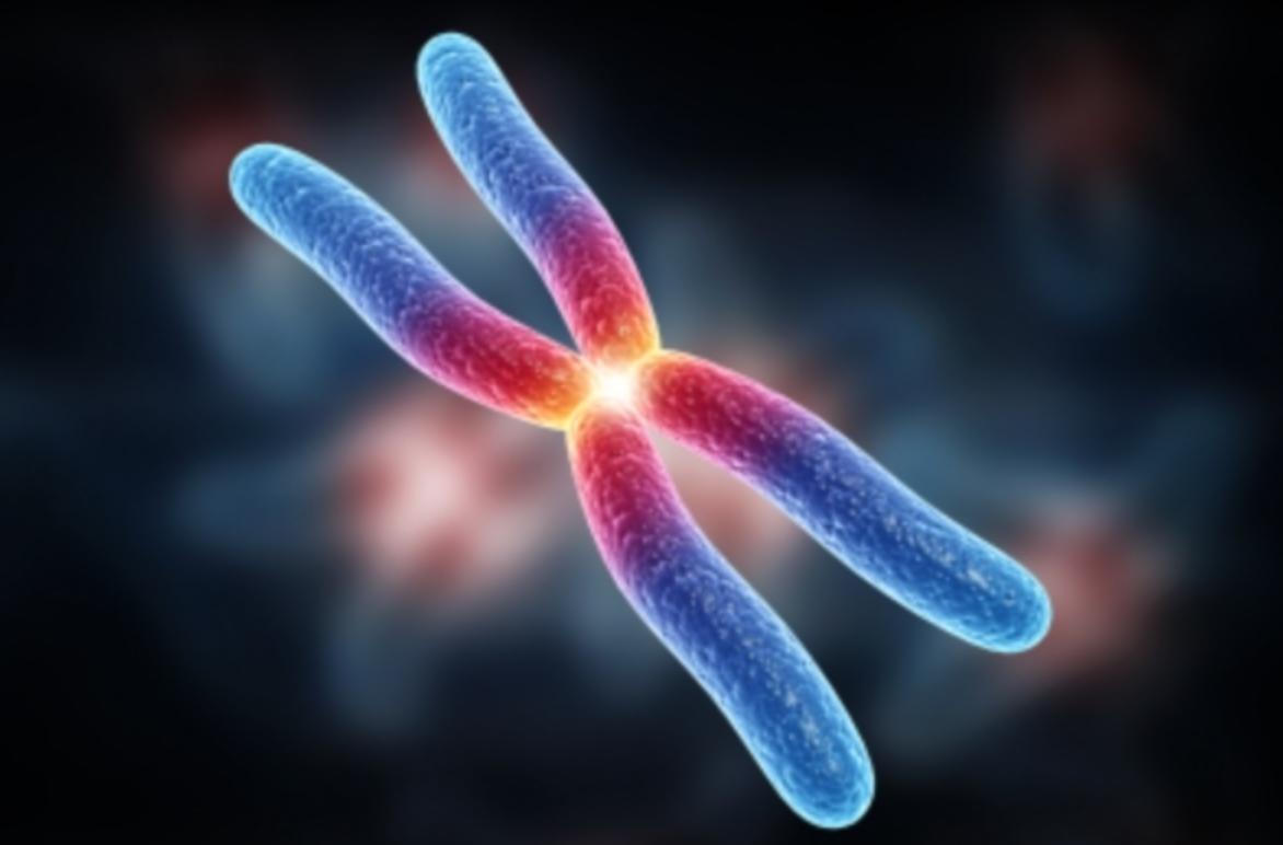 Human Genetic Modification : IVF Saviour?